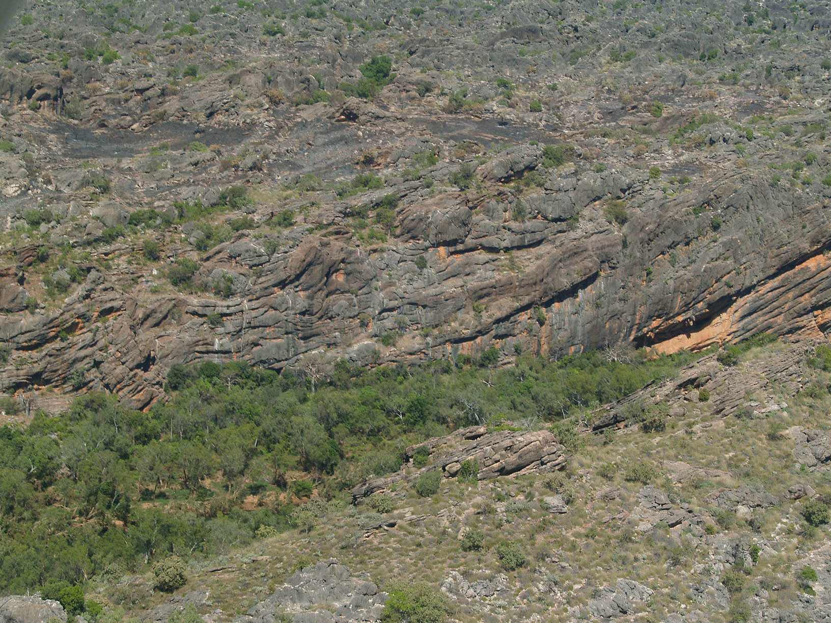 Reef limestone blocks in Famennian marginal-slope beds, Windjana